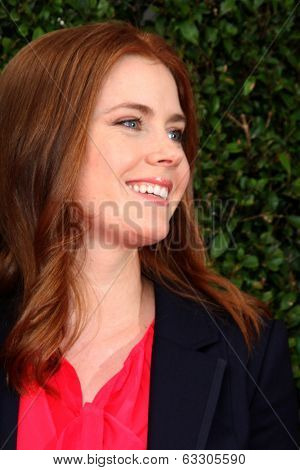 LOS ANGELES - APR 13:  Amy Adams at the John Varvatos 11th Annual Stuart House Benefit at  John Varvatos Boutique on April 13, 2014 in West Hollywood, CA