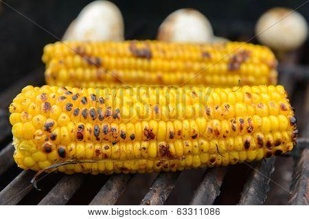 Yellow Tasty Corn On The Bbq