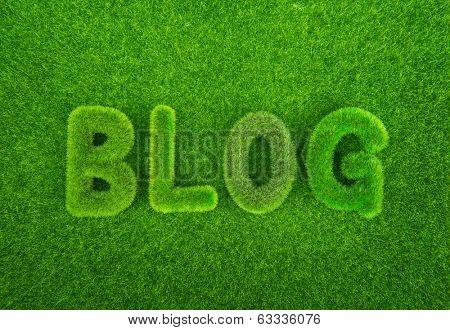 Grass blog word