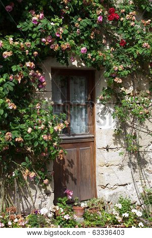 cottage with roses around door.