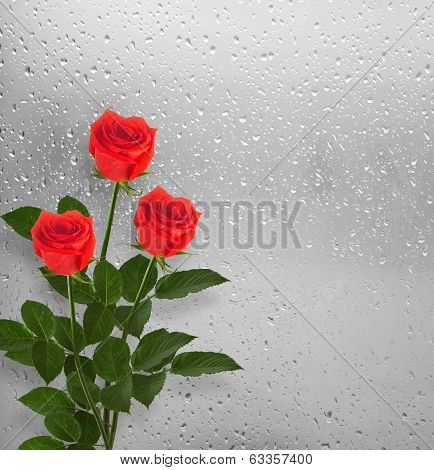 Bouquet Of Red Roses On The Background Of A Window With Raindrops