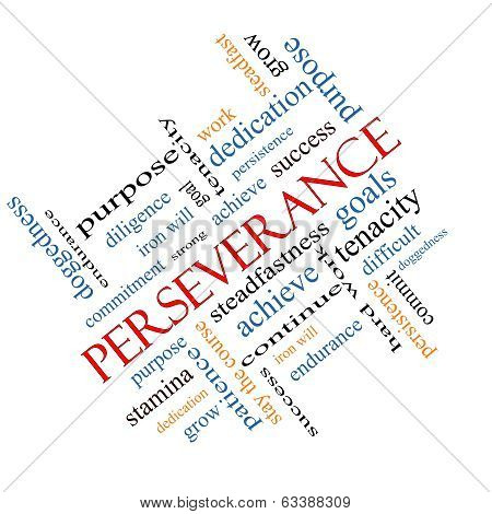 Perseverance Word Cloud Concept Angled