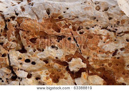 eroded weathered limestone in Mediterranean shoreline at Spain