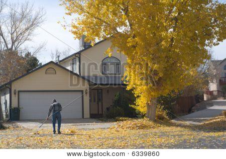 Suburban Fall