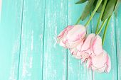Beautiful tulips on color wooden background