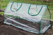 picture of collapse  - Frame collapsible mini greenhouses installed in the vegetable garden - JPG