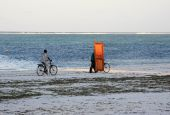 Two Indigenes Of Zanzibar Riding Bicycles Alongside Sandy Tropical Beach