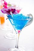 Molecular mixology - Swimming pool Cocktail with caviar and flower petals