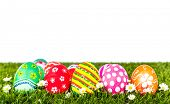 Easter Eggs with flower on Fresh Green Grass over white background