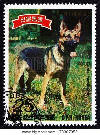 Postage Stamp North Korea 1989 German Shepherd