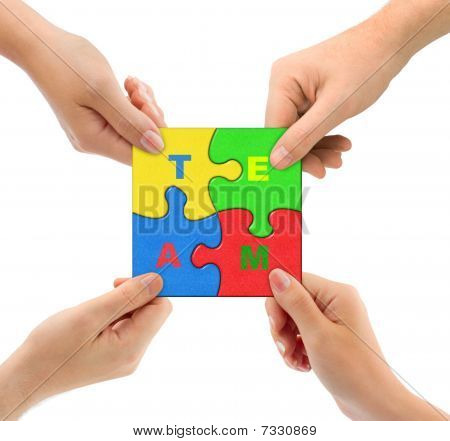 Hands And Puzzle Team