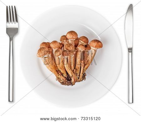 Honey Agarics In Plate With Knife And Fork