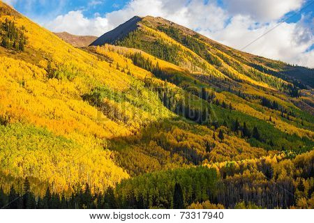 Fall Hills Of Colorado