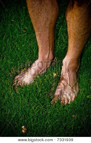 A Man's Bare Feet