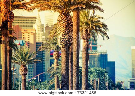 Las Vegas Strip Palms