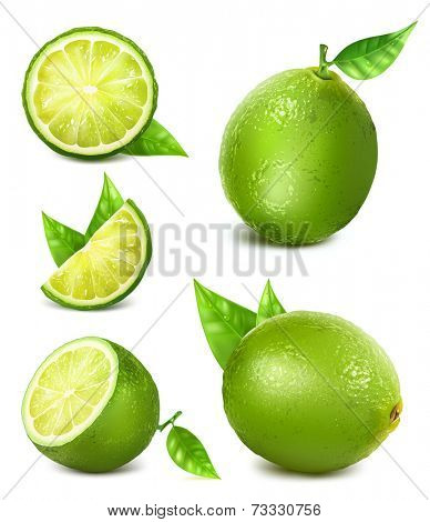 Fresh limes with leaves. Collection of different limes views.