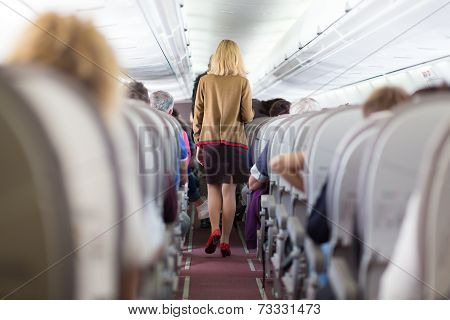 Stewardess on the airplane.