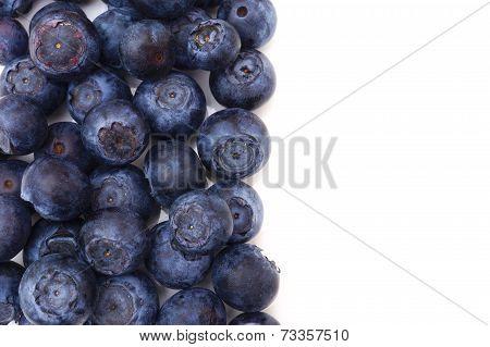 Fresh Blueberries Border On White Background