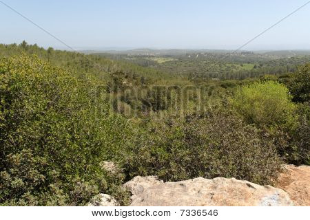 Mediterranean landscape of wooded hills