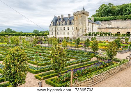 Colorful Garden With Castle Villandry.
