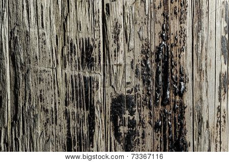 Tar on Wood