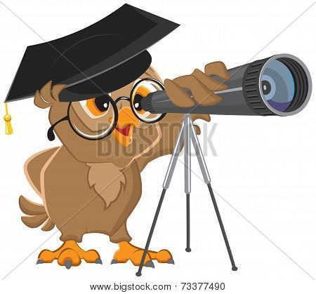 Owl astronomer looking through a telescope