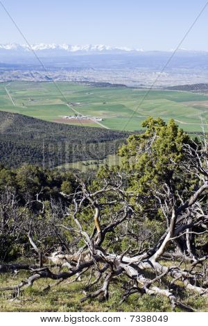 Colorado - área de Montrose e Gunnison