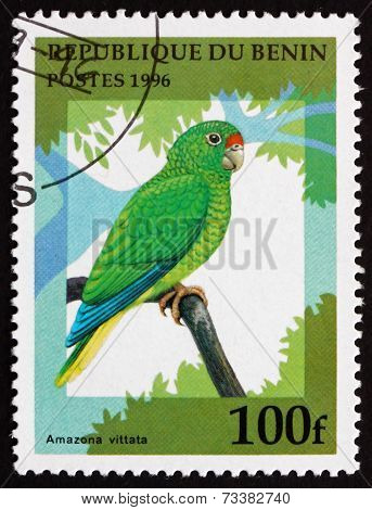 Postage Stamp Benin 1996 Puerto Rican Amazon, Bird