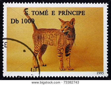 Postage Stamp Sao Tome And Principe 1995 House Cat, Pet