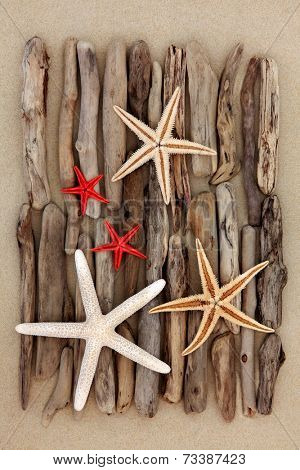 Starfish shell selection and driftwood pieces over sand background.