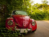 stock photo of beetle car  - Front view of a red retro car - JPG