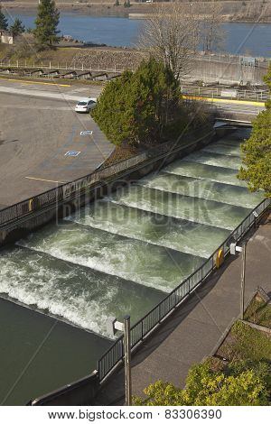 Fish Ladders In Bonneville Oregon.