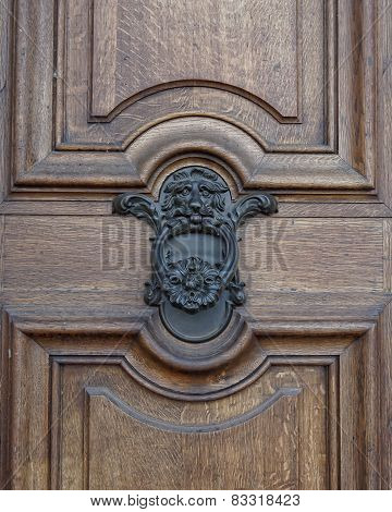 Lion head knocker and wooden door