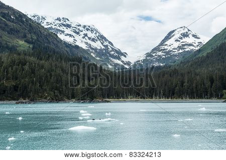 Alaska's Prince William Sound