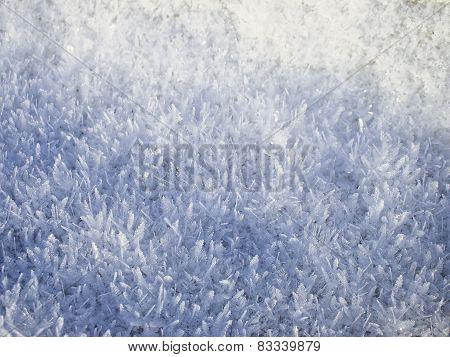 Winter Snow Texture