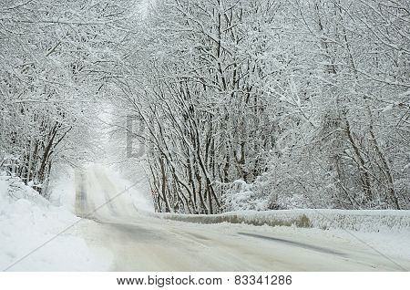 Winter landscape. Snow road.