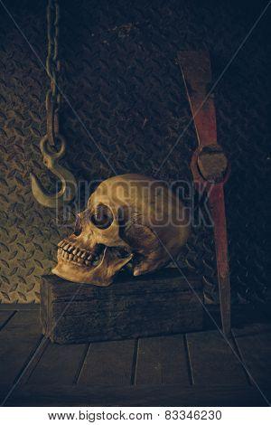 Still Life With A Skull.