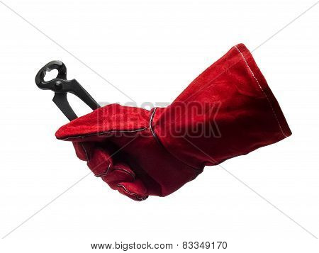 Protection Glove With Pincer