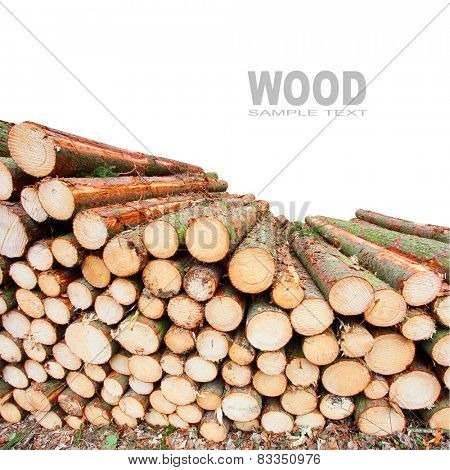Stack of firewood with space for your text.