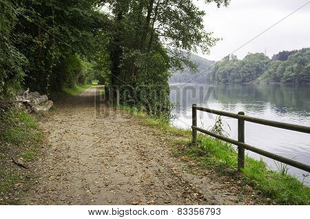 Path under the woods along the Adda river banks. Color photo