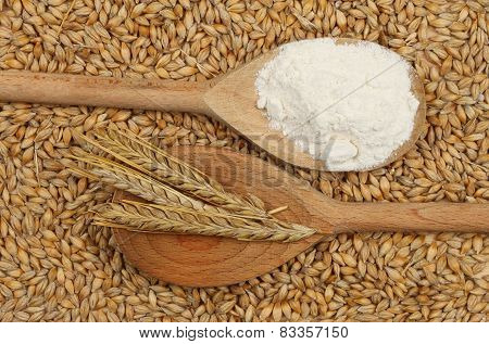 Barley And Flour