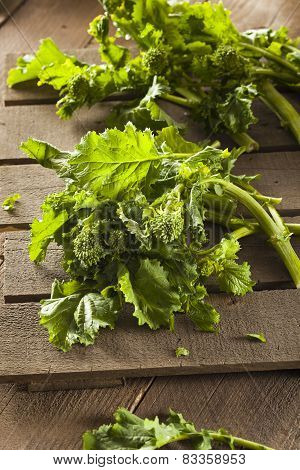Organic Raw Green Broccoli Rabe Rapini