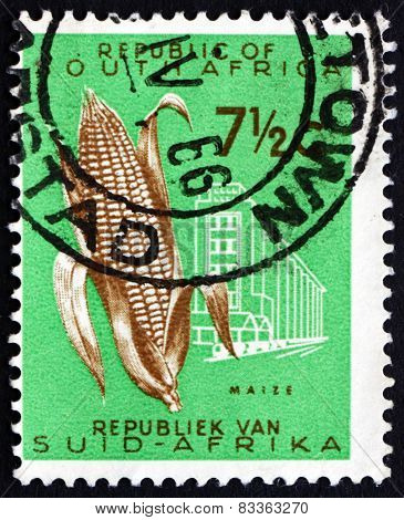 Postage Stamp South Africa 1961 Ear Of Corn, Maize
