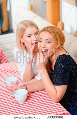 Beautiful women in the cafe