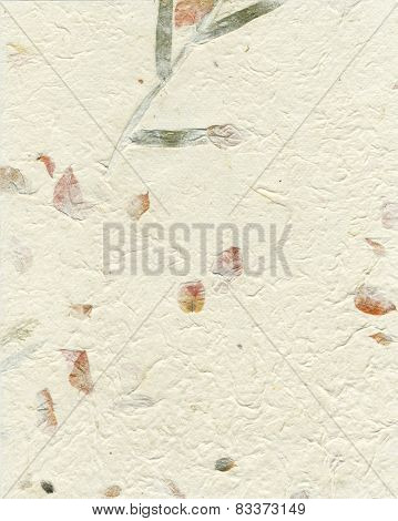 Petals Ivory Paper Background