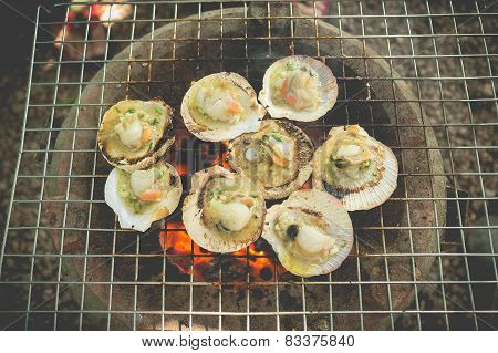 Grilled fresh scallops