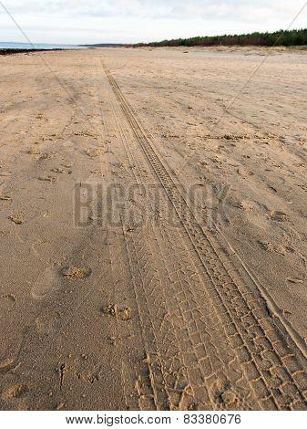 Car Tyre Tracks On The Beach Sand