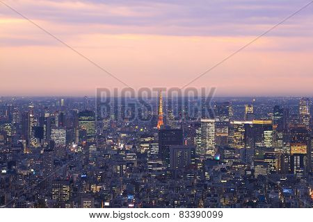 View of Tokyo cityscape and Tokyo tower at sunset time