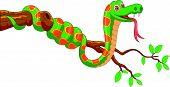 stock photo of green snake  - Vector illustration of Cartoon green snake on branch - JPG