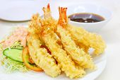 picture of shrimp  - Japanese Cuisine  - JPG